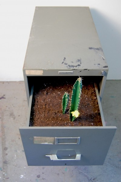 http://emilieselden.com/files/gimgs/th-11_11_cactus.jpg
